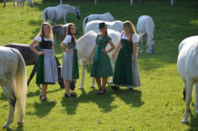 Making of - neue Lipizzanerkollektion_27